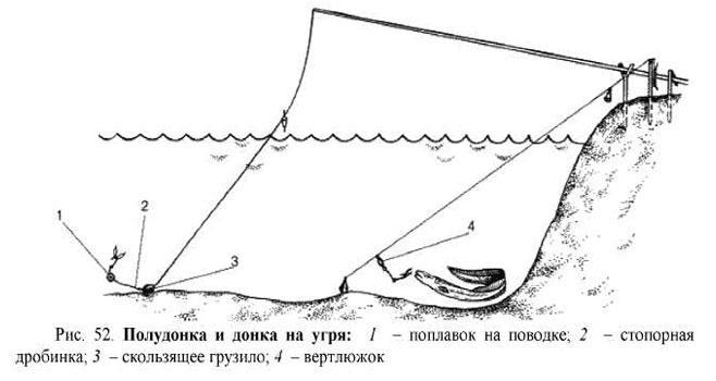 прикормка на угря в русской рыбалке