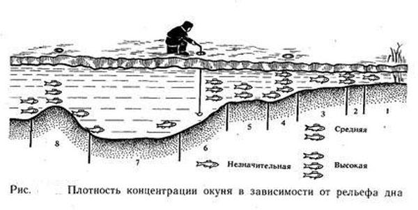 где на реке ловить окуня места