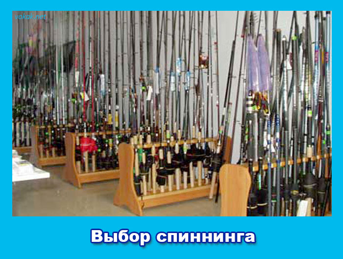 форум самый дешевый рыболовный магазин в москве